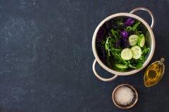 Салат листьев смешанного салата, frisee, arugula, базилик Стоковое Изображение