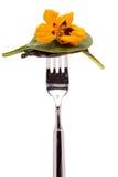 Салат листьев с цветком индийского кресса Стоковая Фотография RF