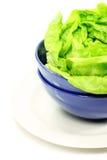 салат листьев шара зеленый Стоковые Изображения