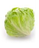 салат льда Стоковые Фото