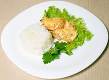 салат мяса зажаренный в духовке рисом стоковое изображение