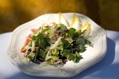 салат обеда Стоковые Фото