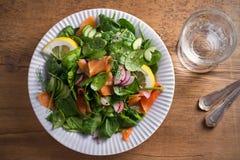 Салат огурца редиски шпината копченых семг с лимоном на белой плите на деревянном столе Стоковая Фотография