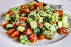 Салат огурца, цукини, томата & травы с сметанообразной шлихтой Vinaigrette стоковое изображение rf
