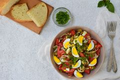 Салат от испеченных баклажанов, луков, томатов, яичек, одел с оливковым маслом и уксусом яблока на светлой предпосылке скопируйте Стоковая Фотография RF