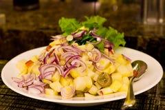 Салат от кипеть картошек, тунца, колец красного лука и салата le стоковая фотография rf