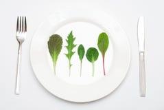 салат плиты листьев Стоковые Фотографии RF