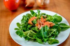 Салат поля с морковью, томатом и луком Стоковое Изображение RF