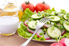 салат редиски Стоковое фото RF