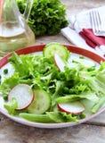 салат редисок зеленых горохов огурца Стоковые Фотографии RF