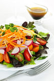 салат сада Стоковые Изображения RF