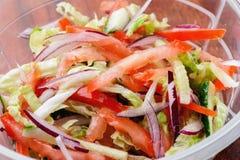 Салат свежего витамина vegetable в конце-вверх пластмасового контейнера Стоковые Изображения RF