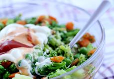 Салат свежего овоща с шлихтой соуса стоковое фото