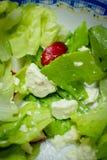 Салат, свежий зеленый салат, Стоковые Фотографии RF