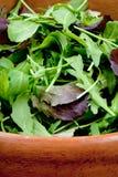 салат смешивания шара свежий деревянный Стоковое Фото