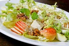 салат сыра Стоковая Фотография RF