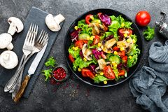 Салат с свежими и зажаренными овощами и грибами Vegetable салат с зажаренными champignons овощ салата плиты Стоковое Фото