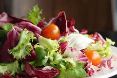 салат тарелки Стоковые Фото