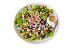 Салат тунца с салатом и томатами изолированными на белом backgroun стоковые изображения rf