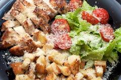 Салат цезаря цыпленка Стоковое Изображение RF