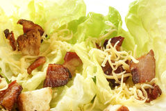 салат цезаря стоковая фотография rf