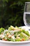 салат цезаря Стоковые Фото