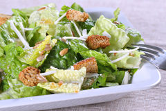 салат цезаря Стоковые Изображения