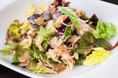 Салат цыпленка и лапши Стоковые Изображения RF