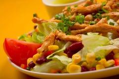 салат цыпленка смешанный Стоковая Фотография RF