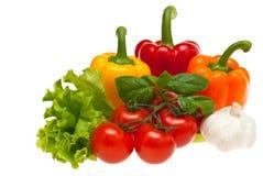 салат чеснока базилика перчит томаты Стоковое Фото
