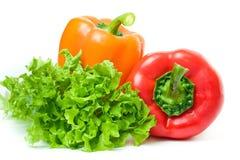 салат 2 перца Стоковое Изображение