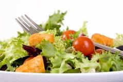 салат стоковые изображения