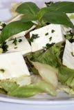 салат feta сыра среднеземноморской Стоковые Фотографии RF