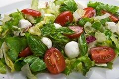 салат mozzarella Стоковые Фото