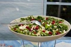 салат rucola Стоковая Фотография RF