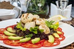 Салат scallops Стоковые Фото