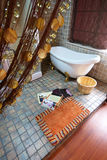 салон украшения красотки Стоковые Фото