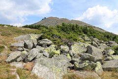 Самая высокая гора гигантских гор, чехии и Польши Стоковые Фото