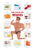 Самая лучшая еда мышцы Стоковое фото RF