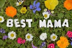 Самая лучшая мама на луге цветка Стоковые Изображения RF