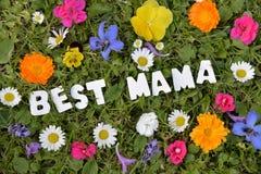 Самая лучшая мама на луге цветка Стоковое Изображение