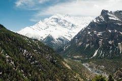 Саммит Annapurna II Стоковое Фото