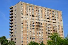 Самое высокорослое в городе Стоковое Фото
