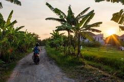 Самокат управляя в Бали во время былинного захода солнца стоковая фотография rf