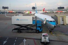 Самолет Боинга 737 авиакомпаний авиакомпании KLM королевских голландских на обслуживании раньше стоковое изображение