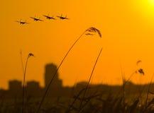 самолет-истребители 4 над заходом солнца Стоковое Изображение