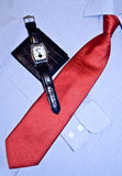 самомоднейшая красная связь рубашки Стоковое фото RF