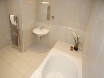 самомоднейшее bathroon нутряное роскошное стоковое фото