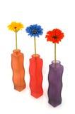 самомоднейшие вазы Стоковое фото RF