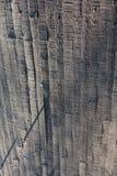 Самомоднейшие формы Стоковые Изображения RF